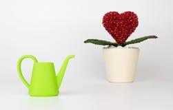 Fleur de coeur avec le complot de arrosage de jouet pour la croissance d'amour Photographie stock libre de droits