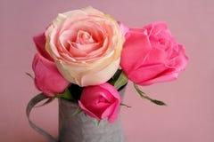 Fleur de couleur de rose de Rose sur le fond rose Photos stock