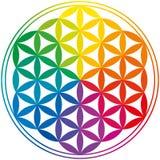 Fleur de couleurs d'arc-en-ciel de la vie Photos stock