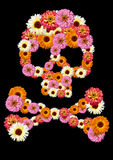 Fleur de crâne Photographie stock
