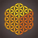 Fleur de cube en vie Photo libre de droits