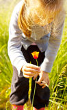 Fleur de cueillette de fille d'enfant sur un pré Photographie stock