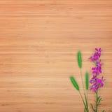 Fleur de delphinium sur un fond en bois L'espace libre pour le texte Photos libres de droits