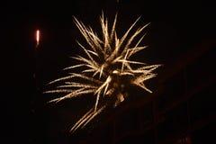 Fleur de feu d'artifice Image stock