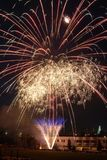 Fleur de feux d'artifice Photo stock