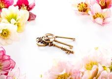 Fleur de Hellebore ou orientalis de Helleborus et clé antiqued sur le blanc photo stock