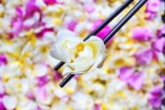 Fleur de jasmin en baguettes Photos stock