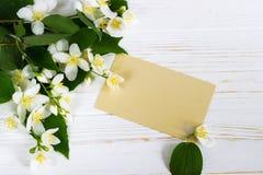 Fleur de jasmin sur la table en bois Carte de voeux Images stock