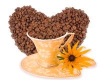 Fleur de jaune d'arome de café Photographie stock libre de droits