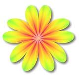Fleur de kaléidoscope Image libre de droits
