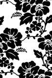 Fleur de ketmie dans noir et le blanc Photographie stock libre de droits