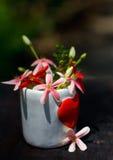 Fleur de l'amour Images stock