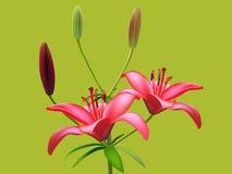 Fleur de lis illustration stock