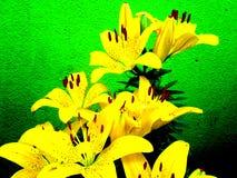 Fleur-DE-lis in Berlijn Royalty-vrije Stock Afbeelding