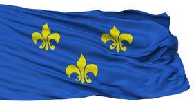 Fleur De Lis Flag som isoleras på vit Vektor Illustrationer