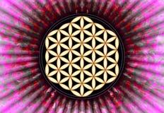 Fleur de Live Symbol - la géométrie sacrée illustration de vecteur