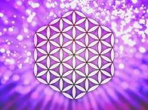 Fleur de Live Symbol - la géométrie sacrée Images stock