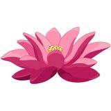 Fleur de lotus de bande dessinée Images libres de droits