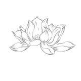 Fleur de lotus Illustration tirée par la main avec l'effet de pointillé Vinta Photos stock