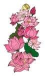 Fleur de lotus tirée par la main de cercle Photos stock