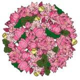 Fleur de lotus tirée par la main de cercle Photos libres de droits