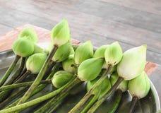 Fleur de lotus verte Photographie stock