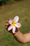 Fleur de main d'enfant Photographie stock