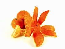 Fleur de mandarine Photographie stock libre de droits