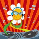 Fleur de marguerite du DJ Photos stock
