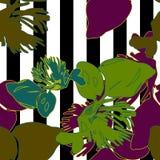 Fleur de nature sans couture sur la rayure noire et blanche illustration libre de droits