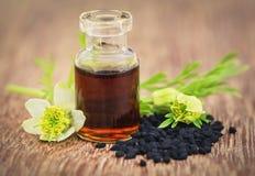 Fleur de Nigella avec les graines et l'huile essentielle photographie stock libre de droits