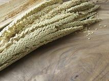 Fleur de noix de coco sur le vieux backgound en bois de table Images libres de droits