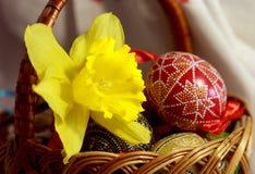 Fleur de Pâques Photographie stock libre de droits
