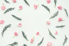 Fleur de pétale sur le fond blanc avec l'espace de copie Images stock