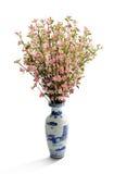 Fleur de pêche dans le vase Photo libre de droits