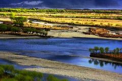 Fleur de pêche de Nyingchi images libres de droits
