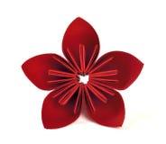Fleur de papier Photos stock