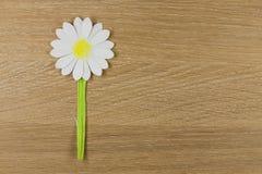 Fleur de papier Image stock