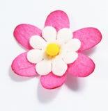 Fleur de papier fabriquée à la main Photos libres de droits