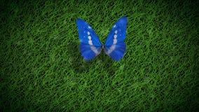 Fleur de papillon heureuse de jour de terre 4K banque de vidéos