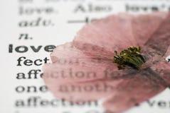 Fleur de pavot sur le livre Image stock
