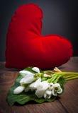 Fleur de perce-neige Photographie stock