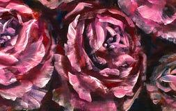 Fleur de plan rapproché de peinture à l'huile Macro rose de plan rapproché de pivoine de grandes fleurs violettes rouges sur la t image libre de droits