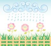 Fleur de pluie Photos libres de droits