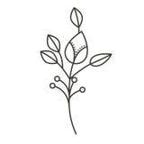 Fleur de ramifications de silhouette de tige et de branches Photos stock