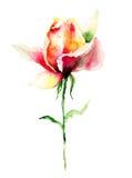 Fleur de Rose Photos stock
