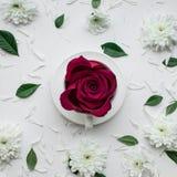 Fleur de Rose dans la tasse de coffe sur le fond blanc Configuration plate valentine Photo libre de droits