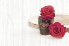 Fleur de rose de deux rouges sur le bois léger Image libre de droits