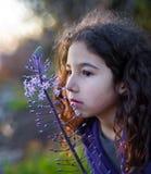 Fleur de rose de petite fille Photographie stock