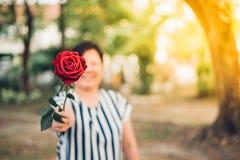 Fleur de rose de rouge avec la main humaine dans la Saint-Valentin Photo stock